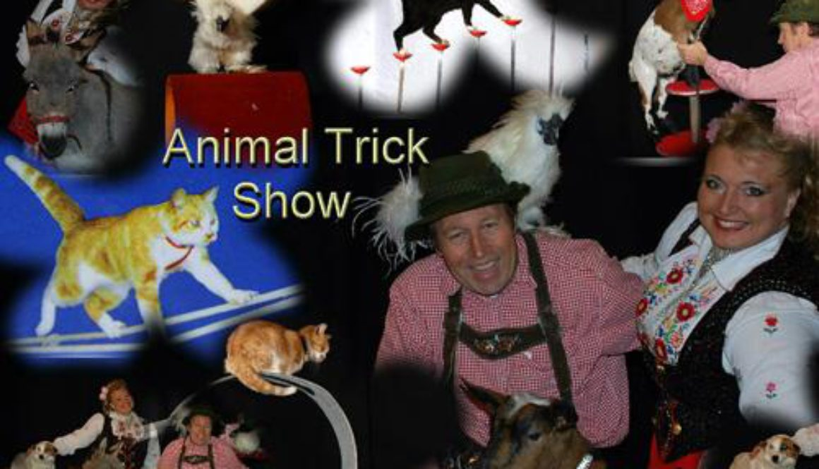 animal-trick-show-boeken